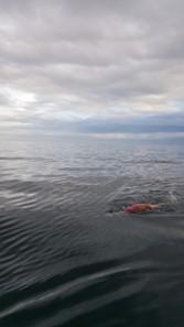 3. Clare swimming